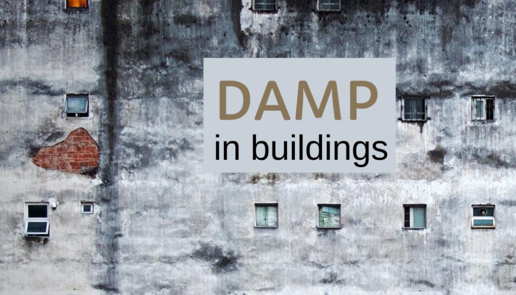 Damp blog