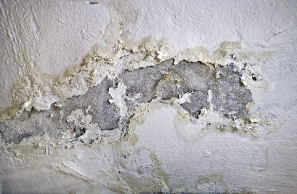 signs of damp on an internal wall